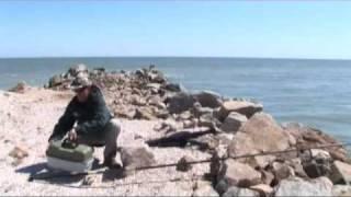 Новые правила рыболовства Азово-Черноморского бассейна ...
