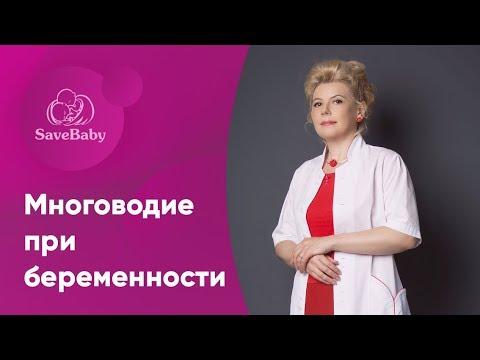 Многоводие при беременности. Елена Никологорская. Акушер-гинеколог. СПб