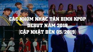 Các Nhóm Nhạc Tân Binh Kpop Debut Năm 2019 (Cập Nhật Đến 05/2019)