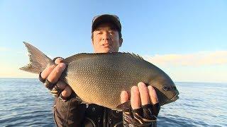 #214 磯釣りシーズン到来!愛媛県南エリアで名手競演