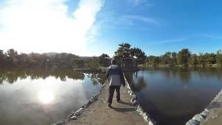 養翠園1 三ツ橋 (和歌山市) 360度VR映像