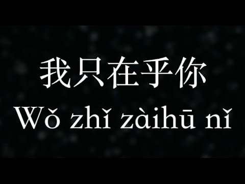 鄧麗君/Teresa Teng:【我只在乎你】時の流れに身をまかせ (KTV With Pinyin)