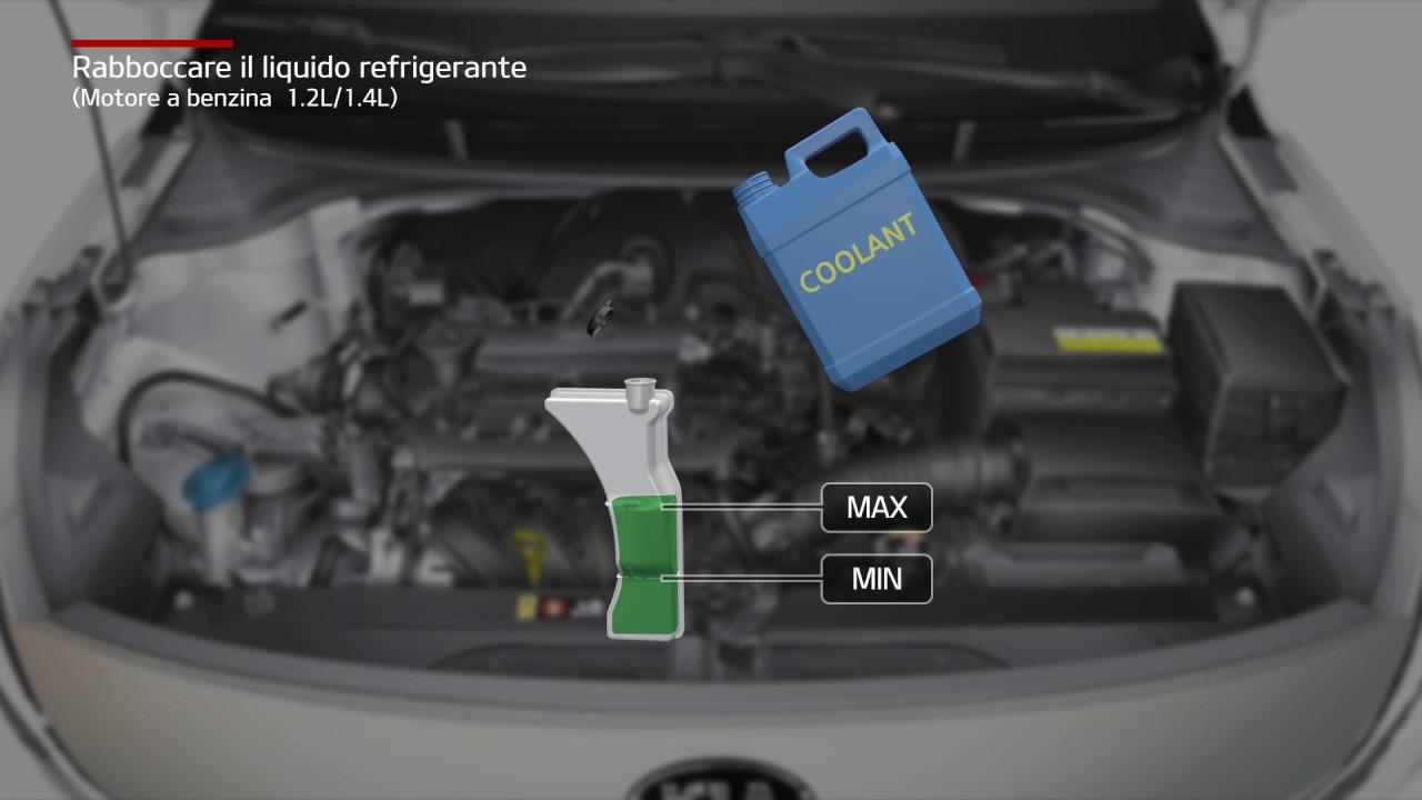 Rio - Rabboccare il liquido refrigerante [Motore a benzina ...