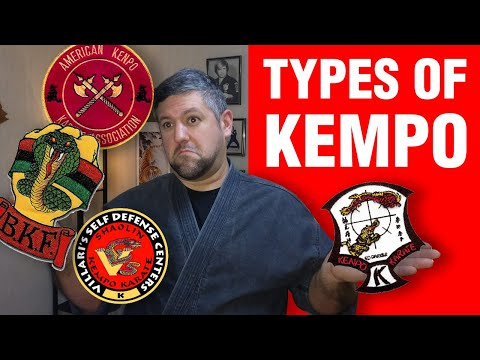Different Types Of Kempo | ART OF ONE DOJO