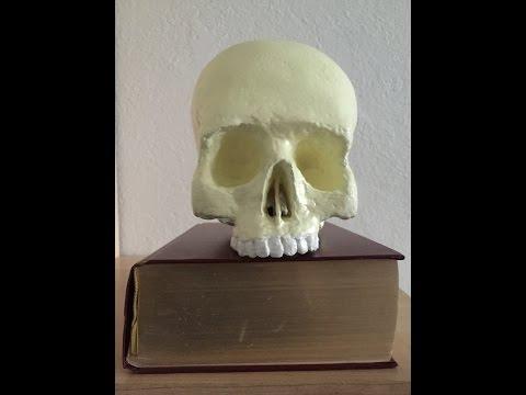Paper Mache Skull - Papier Mache Schädel - Part 1