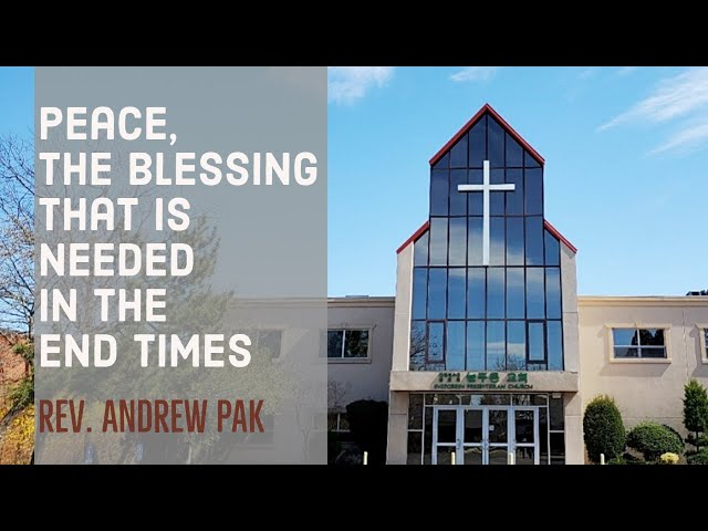Peace, the blessing that is needed in the end times   Lord's Day   7/12/2020