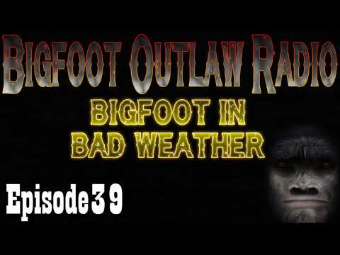 Bigfoot Caught In Hurricane! Bigfoot Outlaw Radio Ep 39
