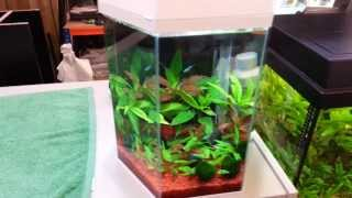 Weald Aquatics - Compact Hexagonal Aquarium
