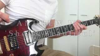 ANDREW WK 'She is Beautiful' GUITAR COVER