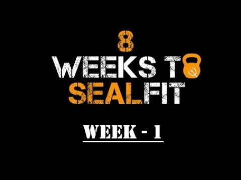8 Weeks To Sealfit - Week 1