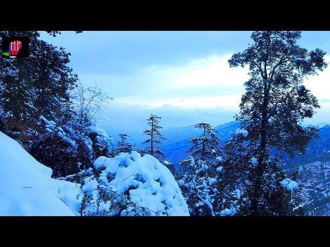 BEAUTY OF SNOWFALL IN SHIMLA
