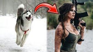 r-prorevenge-she-becomes-john-wick-to-get-her-stolen-dog-back