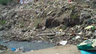 Paruthi veerans in Gudiyatham - Gudiyatham Gangai Amman Thiruvizha 2010 HD - Part 1