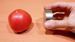 видео Польские неодимовые магниты