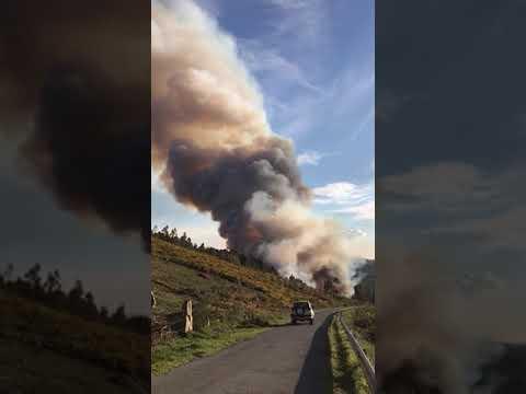 Medios aéreos y terrestres trabajan para controlar un incendio en Pambre