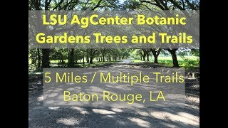 Lsu Agcenter Botanic Gardens Trees And Trails - Trails In Louisiana Near Baton Rouge