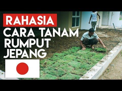 Cara Merubah Tanah di World Flat Dengan Apa Saja - Minecraft PE (Pocket Edition) from YouTube · Duration:  5 minutes 47 seconds