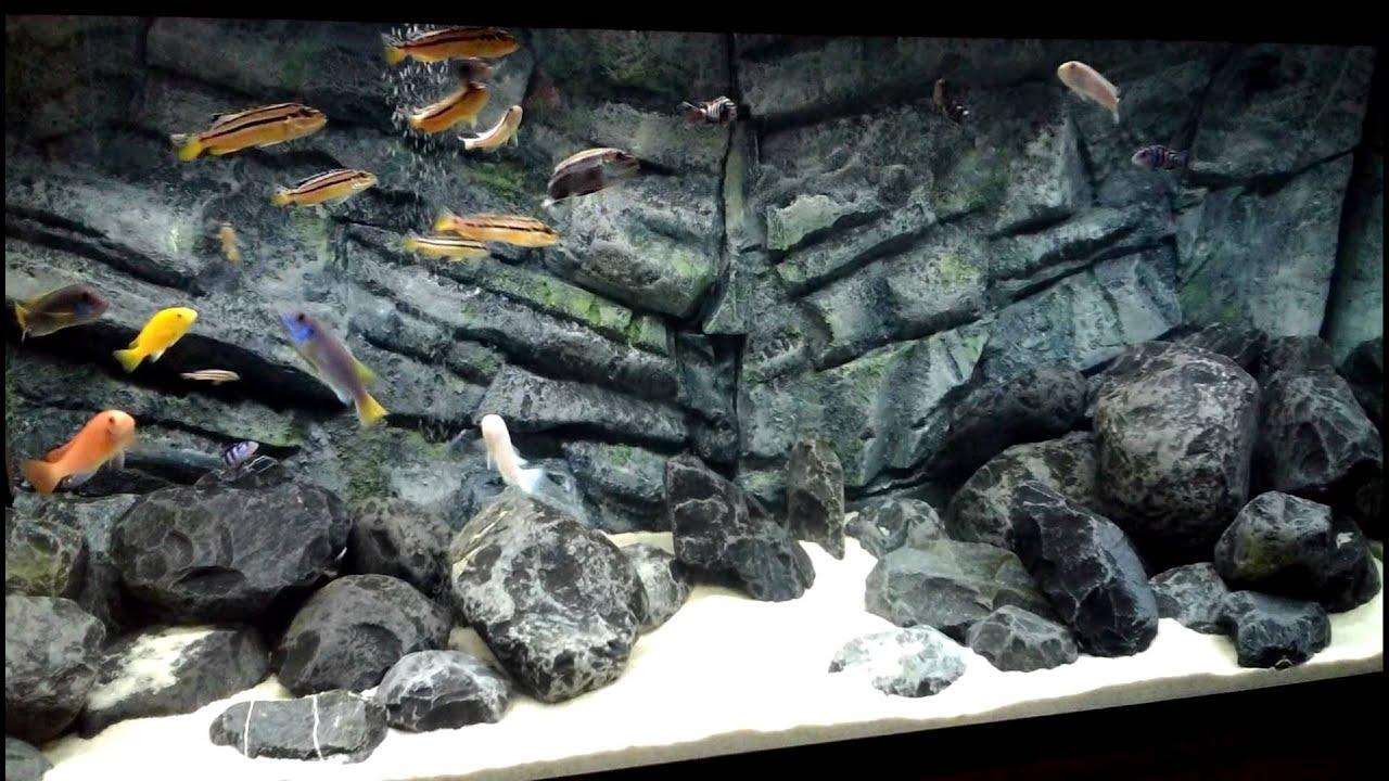Аквариум круглый Tetra на подставке с освещением и фильтром! - YouTube