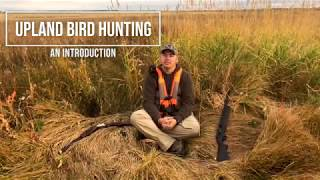 Download Video An Intro to Upland Bird Hunting MP3 3GP MP4