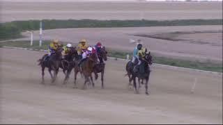 Vidéo de la course PMU PREMI CAMPIONAT DE BALEARS DE TROT MUNTAT