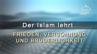 Der Islam lehrt Frieden, Versöhnung und Brüderlichkeit | Stimme des Kalifen