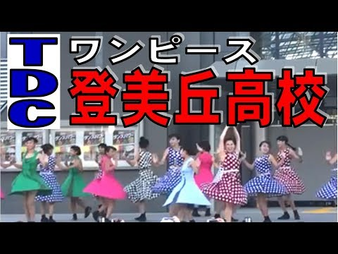 【ワンピース】登美丘高校 モダンチック ダンス【TDCダンスパワー】