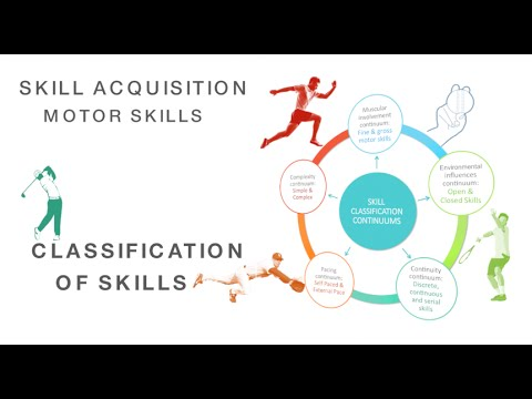 Classification Of Motor Skills Skill Acquisition Fine