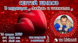 Сергей Шипов 🎤 в турнирах ❤️ Любовь и шахматы ❤️