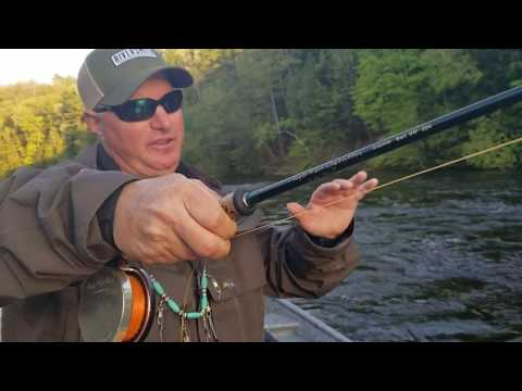 Fly Casting - Chuck & Duck Fly Casting - Free Style Nymphing - Michigan Fly Casting Tips.