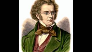 "Franz Schubert: ""La muerte y la doncella"" - 3. Scherzo, Allegro molto"