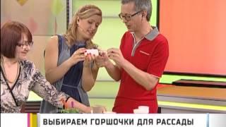 Выбираем горшочки для рассады(, 2013-04-02T07:49:47.000Z)