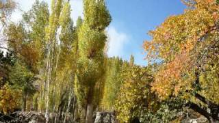 Autumn in Gulmit