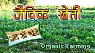 जैविक खेती के फायदे/ Organic Farming-Benefits