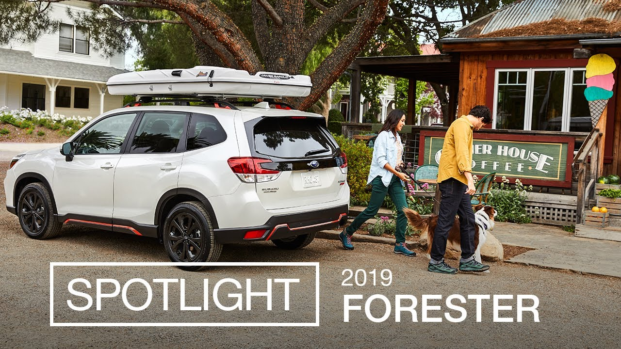 All New 2019 Subaru Forester Suv Spotlight Ft Sport Model Youtube