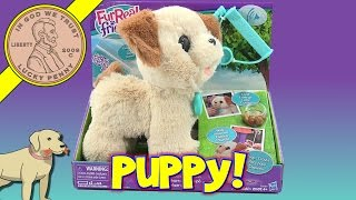 FurReal Friends Pax, My Poopin' Pup Plush Dog Toy, Butch Has A Buddy!