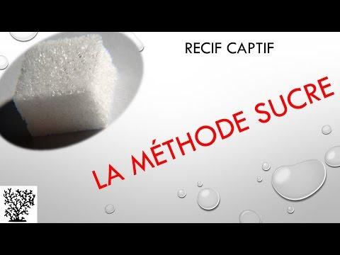 La méthode sucre - Mr Recif Captif #56