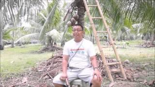 Edgardo Buhian - Gawad Saka CY2015 Outstanding Coconut Farmer National Winner