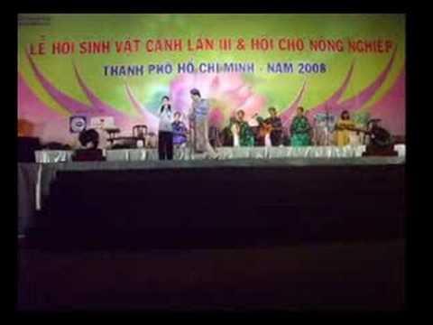Vong Co Hai - Vien Chau