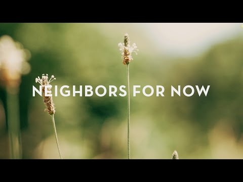 Chestnut Grove - 'Neighbors for Now' (Live)