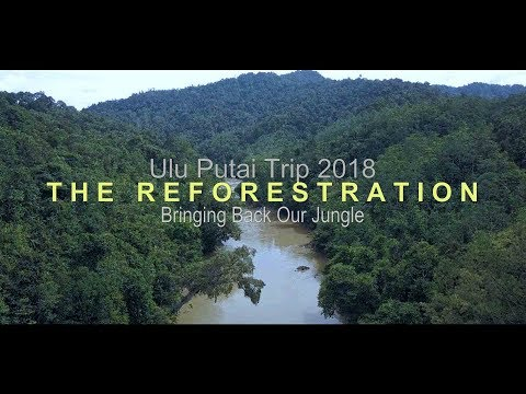 Ulu Putai Trip 2018 | REFORESTATION | Bringing Back Our Jungle