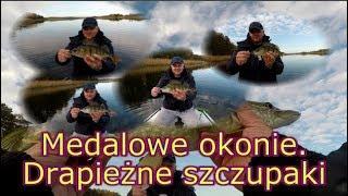 Na ryby z Markiem # 209 Medalowe okonie.  Drapieżne szczupaki. Wędkarstwo
