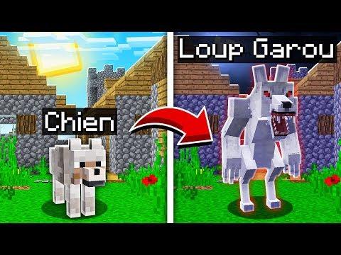 Comment Avoir Des Animaux Dans Minecraft
