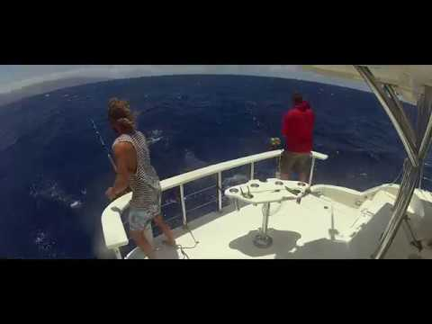 Unbelievable Marlin fishing on 'Offshore Hunter'