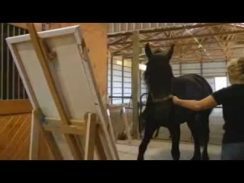 Download Justin The Painting Horse