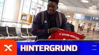 """Alphonso """"Phonzy"""" Davies: Der personifizierte Umbruch   FC Bayern München   Bundesliga   SPOX"""