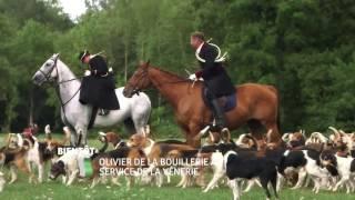 Olivier de La Bouillerie, au service de la vénerie
