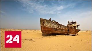Аральские волны. Специальный репортаж Ольги Курлаевой - Россия 24