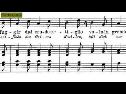 Semplicetta tortorella, Lesson 1.2 (Nicola Vaccai) score animation, Soprano/Tenor, Karaoke