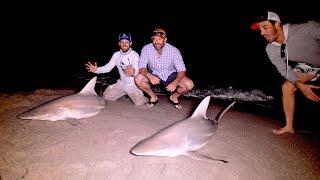 Beach Shark Fishing with the New York Mets - 4K