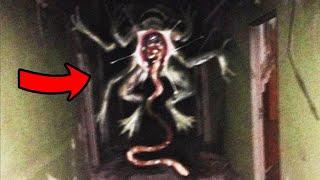 ¿Quien demonios es Ribbit? Historia de Terror de la criatura de Trevor Henderson
